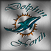 Dolphin North's Avatar