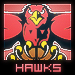 Hawks Fan's Avatar