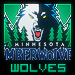 TWolves Fan's Avatar