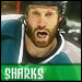 SJSHARKIES's Avatar