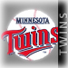 Twins Fanatic's Avatar